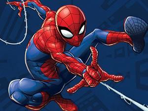 Spider Man: Mysterio Rush