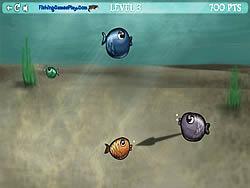 Sel Fish
