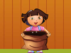 Dora Candy Catcher