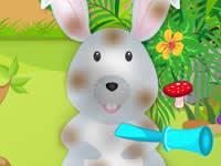 Cute Bunny Day Care